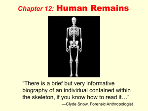 Human Remains ppt