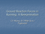 Ground Reaction Forces in Running: A Reexamination