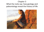 Chapter 3 Geology, paleontology and diversification of life