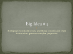 Big Idea #4 Ecology