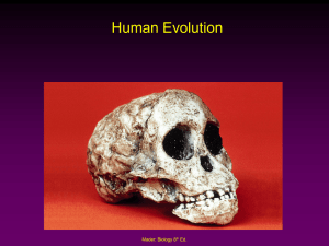 D.3.4-3.10 Human Evolution PowerPoint
