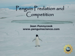 Predation and competition