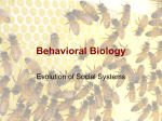 Behavioral Biology - Oakland University