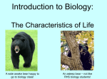 Introduction to Biology: The Characteristics of Life