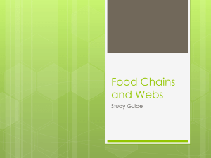 Food Chains and Webs - Greenfield