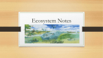 Ecosystem Notes - Alvin Independent School District
