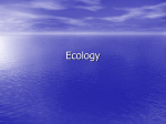 Ecology Chapter 3-1