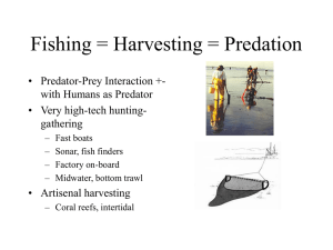 Fishing Methods Catch and Bycatch