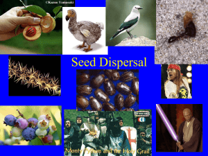 lecture on seed dispersal