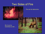Two Sides Of Fire - Delaware ENVIROTHON