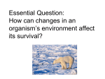 Essential Question: How can changes in an organism`s environment