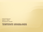 temperate grasslands-craig-