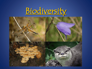 Biodiversity - My Teacher Pages