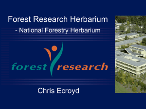 National Forestry Herbarium - Nationally Significant Databases