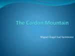 Mountain Cardon