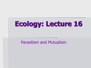 Ecology: Lecture 1
