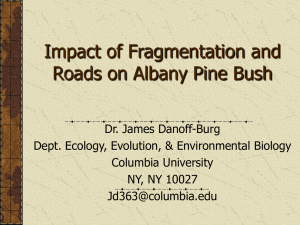 Impact of Fragmentation and Roads on Intact Pine Bush