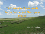 Temperate Grasslands Konza Prairie and Shortgrass Steppe