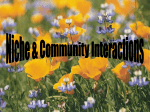 Niche & Community Interactions PPT