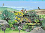 Ecosystem and Communities