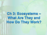 Ch 3: Ecosystems – What Are They and How Do They Work?