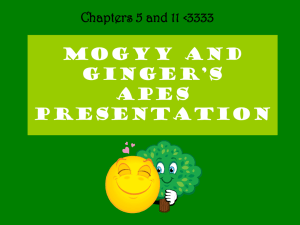 mogyy and ginger`s apes presentation