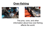 Over-fishing - Schurger