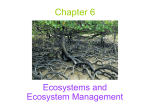 lec_ppt_Ecosystems and Ecosystem Management