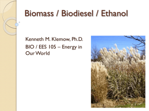 Overview of Biomass/biodiesel