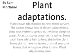 Plant adaptations - Parkland School District