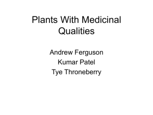 Plants With Medicinal Qualities