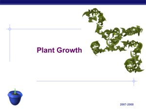 PlantGrowth and hormones