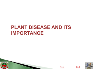 1.Plant disease and its importance