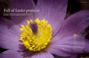 Full of Easter promise