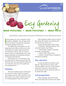 Easy Gardening • - IRISH POTATOES