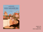English	223 Lecture	3 Wide	Sargasso	Sea