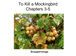To Kill a Mockingbird Chapters 3