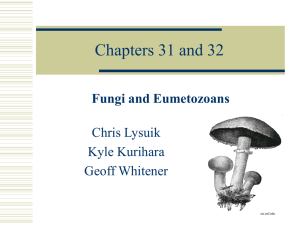 Chapters 31 and 32 - Kealakehe High School