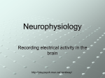 Neurophysiology - Memorial University of Newfoundland