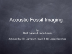 Acoustic Fossil Imaging
