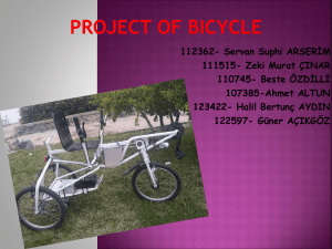 "Project Name""Bicycle"""