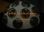 Multi-PM optical module progress