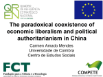 Growth, Consumption and Political Stability in China