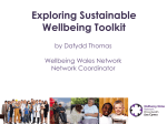 Wellbeing Wales Network