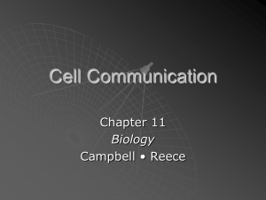 Cell Communication (Chapter 11)