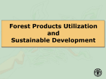 Forest Products Utilization and Sustainable Development
