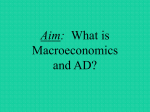 What is Macroeconomics? - The Bronx High School of Science