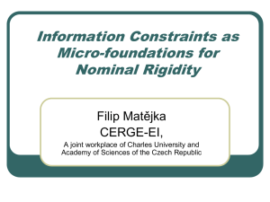 Information Constraints as Micro-foundations for Nominal Rigidity