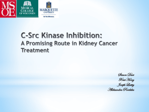 C-Src Kinase Inhibition: A Promising Route in Kidney Cancer