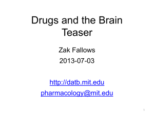 Drugs and the Brain teaser (PPT)